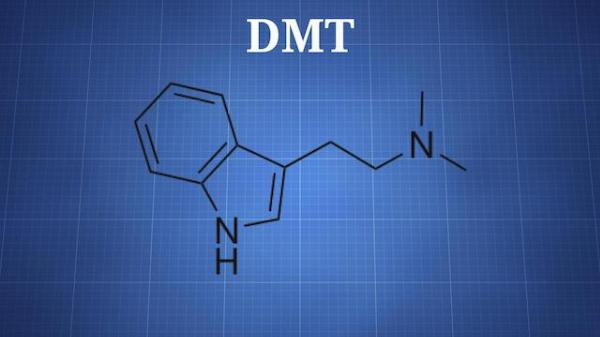 dimethyltryptamine
